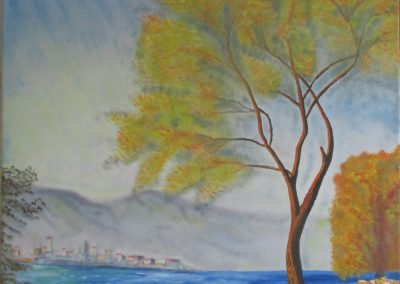 Trees on the shore